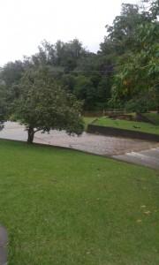 chuva (24)