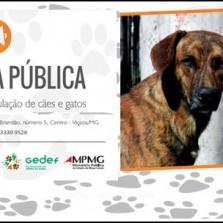 Em Viçosa,Audiência Pública sobre o Controle Ético da População de Cães e Gatos