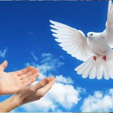 Paróquias de Viçosa celebram Ano da Paz