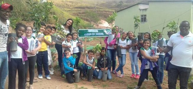 Centro municipal de educação recebe doação de mudas da comunidade do Bom Jesus