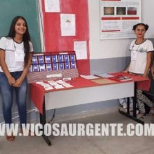 Projetos de escolas estaduais mineiras são destaques em feira científica da UFV