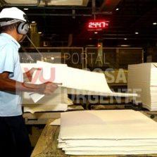 Produção industrial brasileira cresce 0,8%