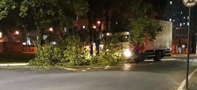 Caminhão atinge árvore próximo da UFV
