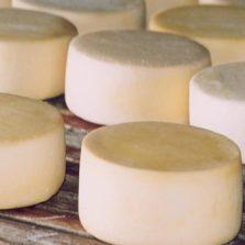 Produtores mineiros de queijo artesanal ganham força com criação de associação estadual