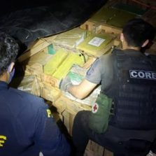 Polícia apreende 5 toneladas de maconha no Rio de Janeiro